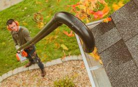 STIHL-i puhurid, mitte ainult puulehtede koristamiseks – leia endale sobiv!